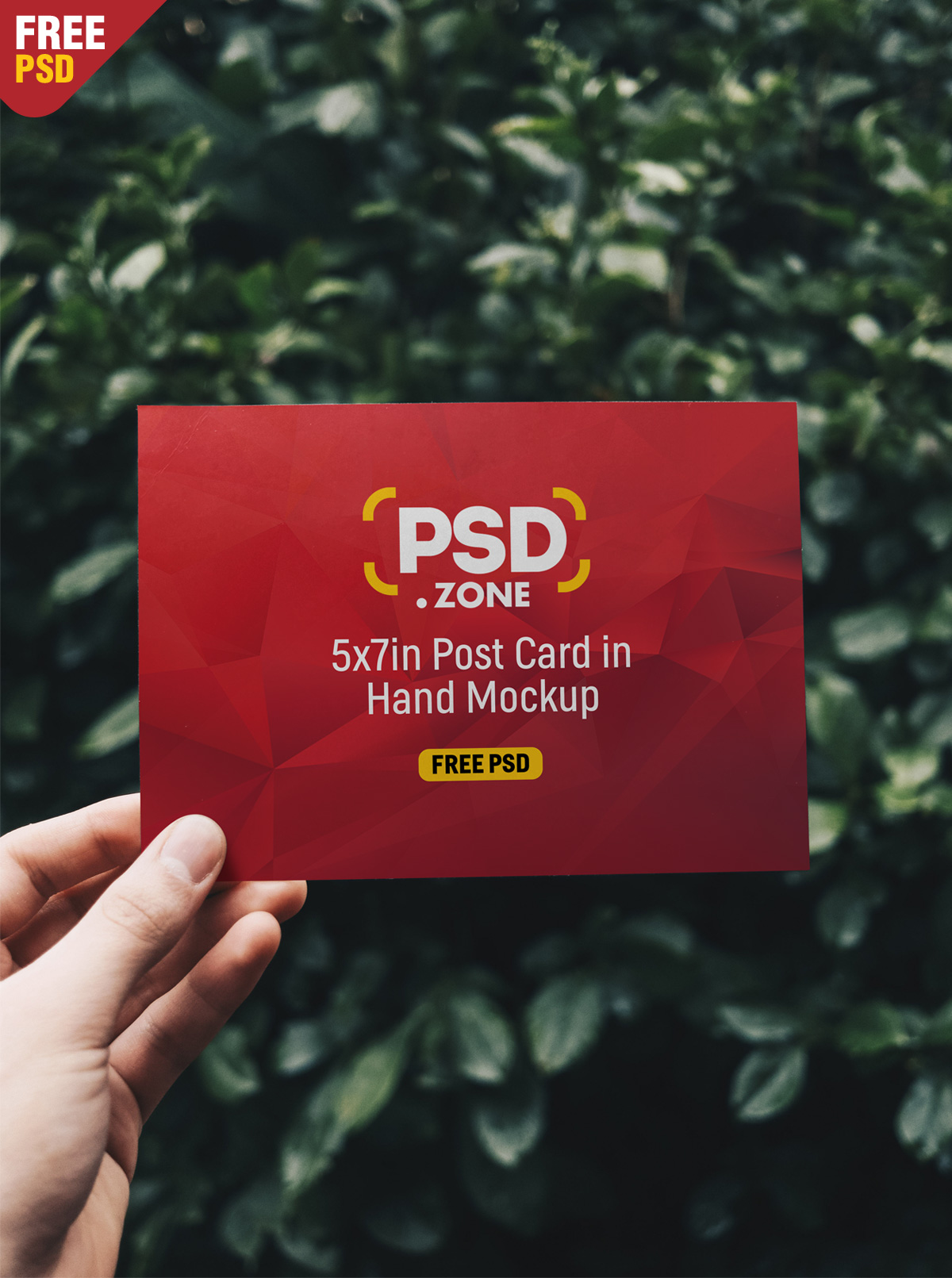 Post Card in Hand Mockup PSD