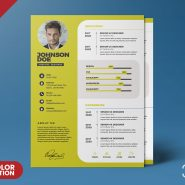 Professional Resume Design PSD Template