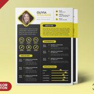 A4 Size Creative Resume CV PSD